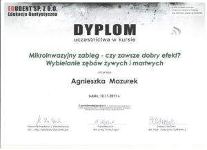 aga Mazurek 2 001 300x218