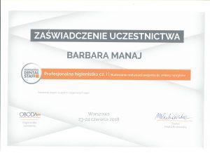 bm 001 1 300x218