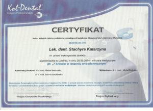 kasia stachyra 3 001 300x218